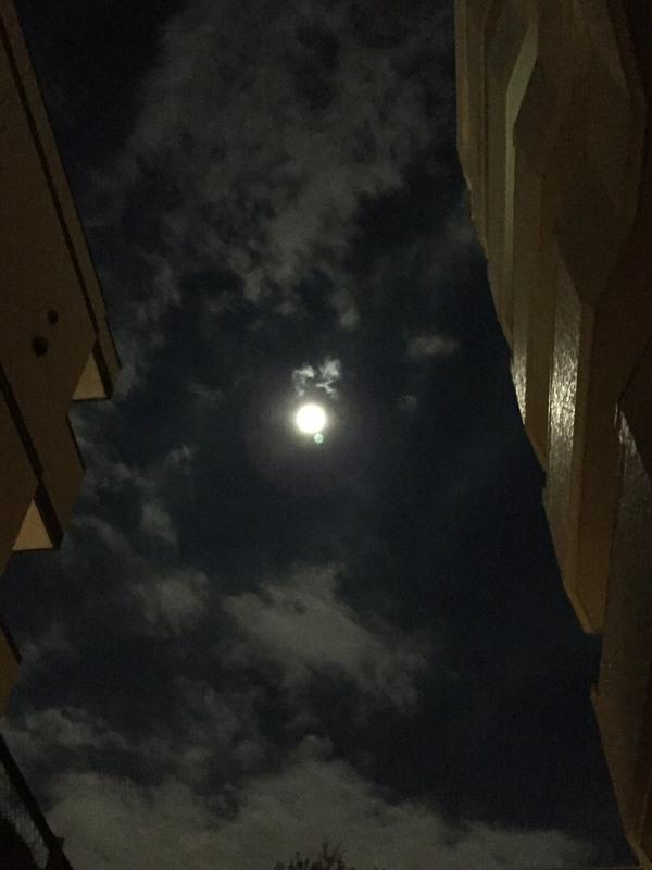 アナスタ浄化と癒しの夜