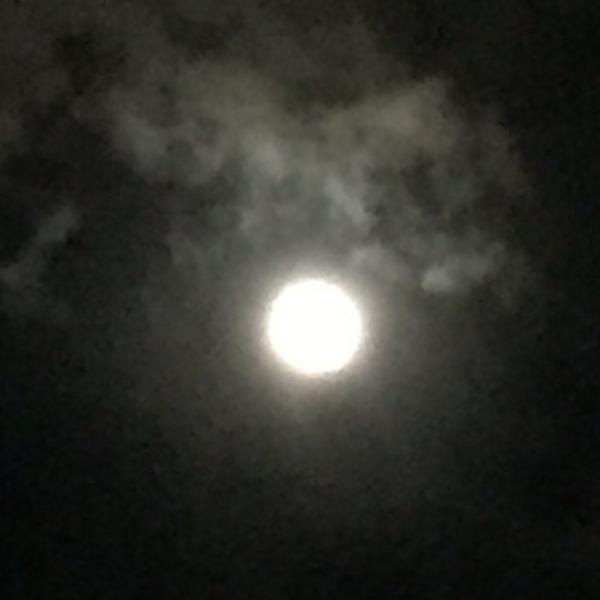 満月瞑想会